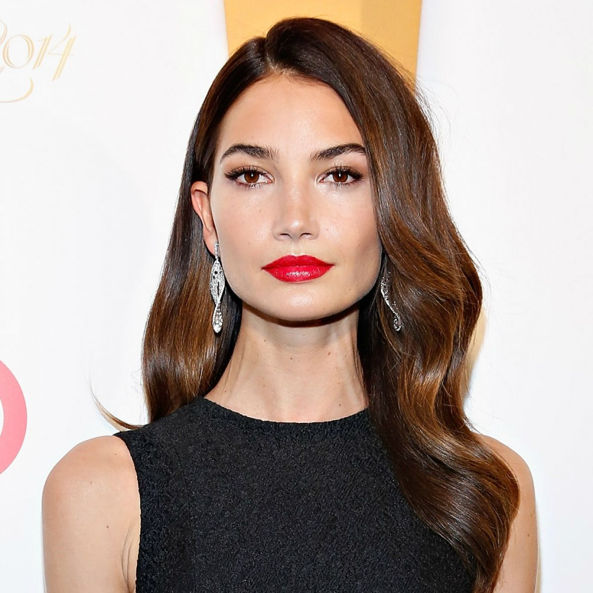Lily Aldridge Net Worth, Private Life, Career And Biography Info 6