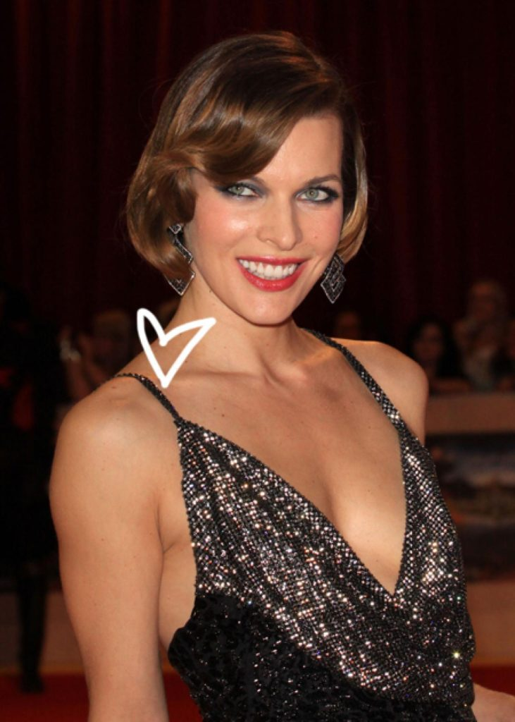 Milla Jovovich Net Worth, Movies, Career, Family Life And Biography 10