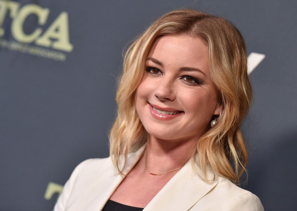 Emily VanCamp Net Worth, Pics, Private Life, TV Shows And Movies 13