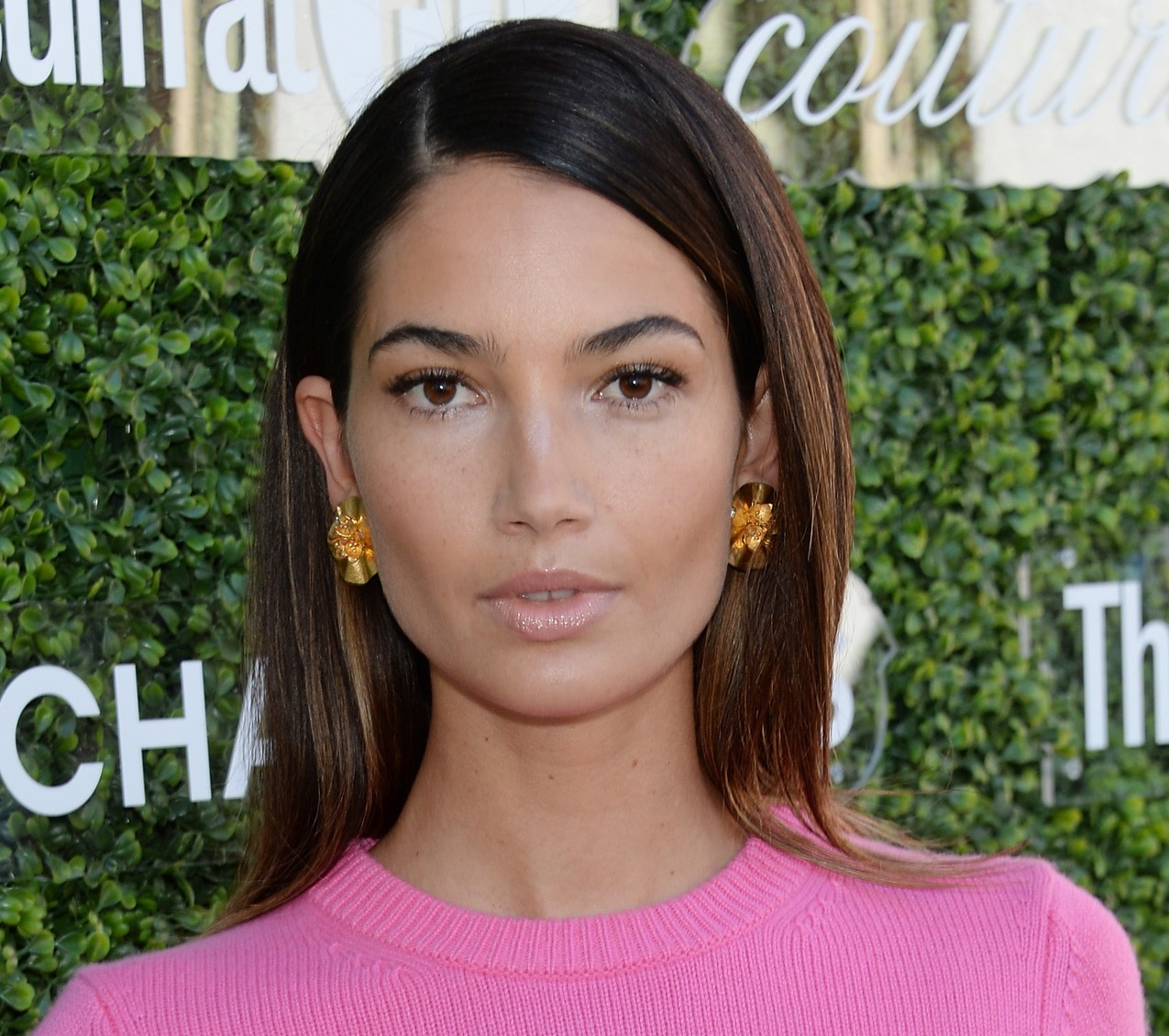 Lily Aldridge Net Worth, Private Life, Career And Biography Info 3