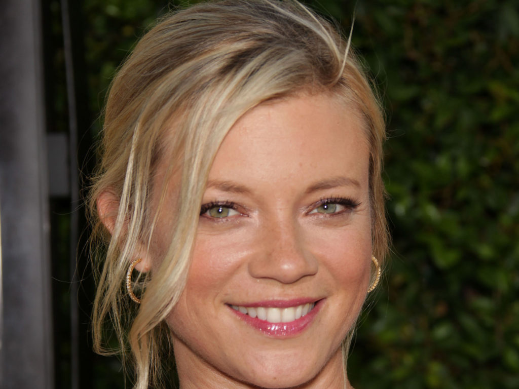 Amy Smart Net Worth, Movies, TV Shows, Biography And Pics 10