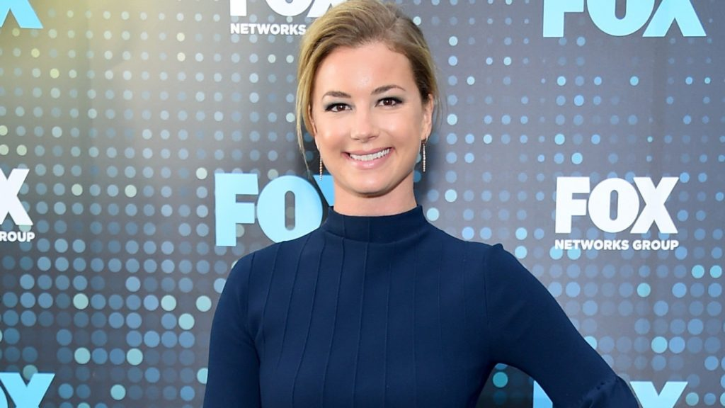 Emily VanCamp Net Worth, Pics, Private Life, TV Shows And Movies 16