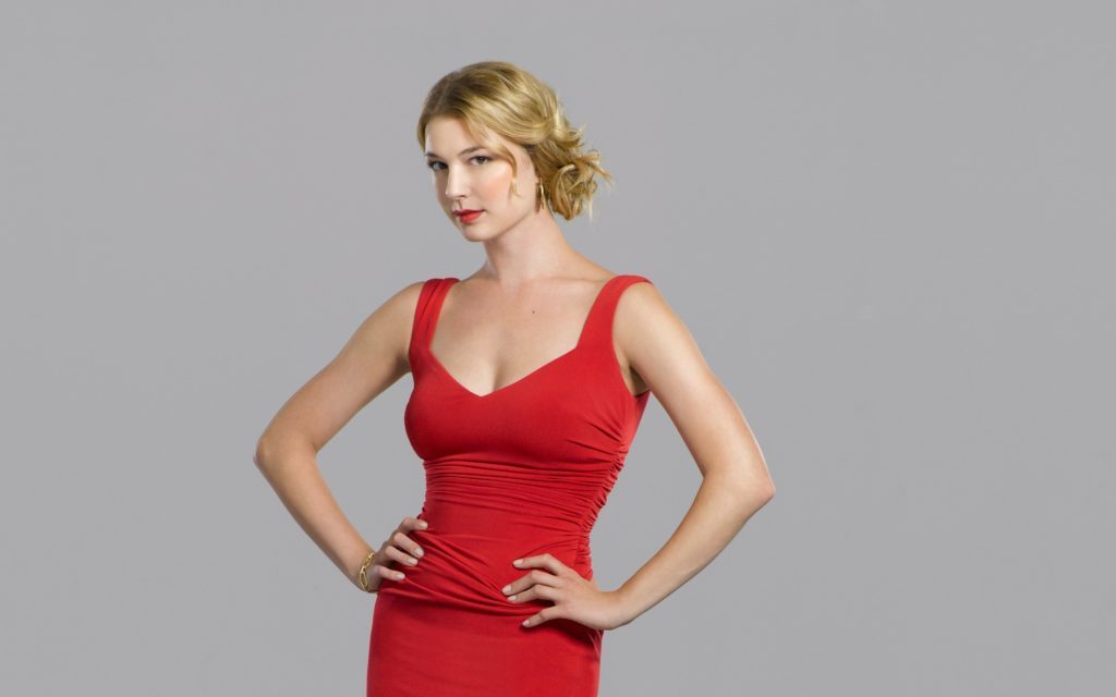 Emily VanCamp Net Worth, Pics, Private Life, TV Shows And Movies 9