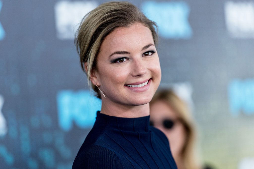 Emily VanCamp Net Worth, Pics, Private Life, TV Shows And Movies 10